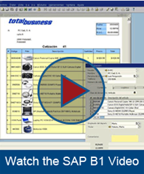 SAP Business One Video
