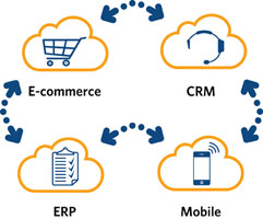 OLK SAP Business One Sales Cloud